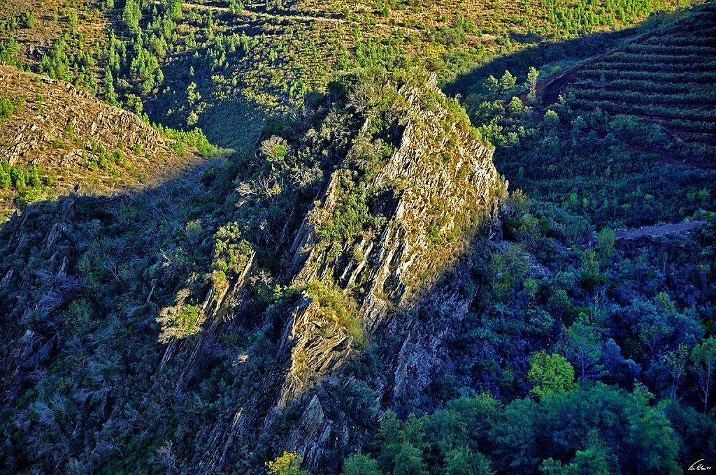 Castelo do Mau Vizinho