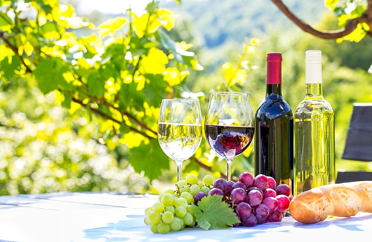 vinho44 (1)